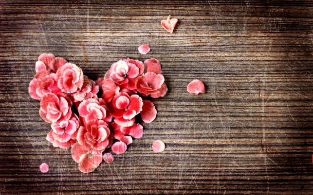 Petals Heart wallpapers and stock photos
