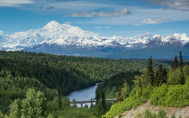 Charming Denali National Park wallpapers and stock photos