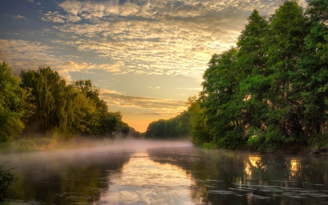 Forest River Foggy Clouds Dusk wallpapers and stock photos