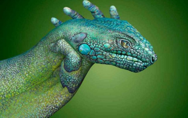 Iguana Hand Painting wallpapers and stock photos