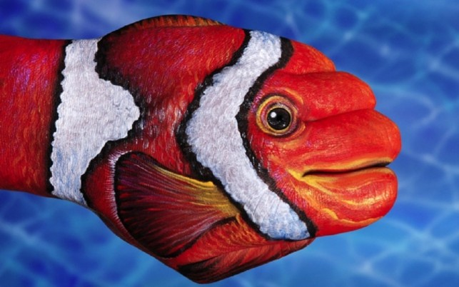 Fish Hand Painting wallpapers and stock photos