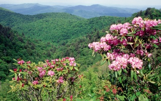 Blue Ridge Parkway wallpapers and stock photos
