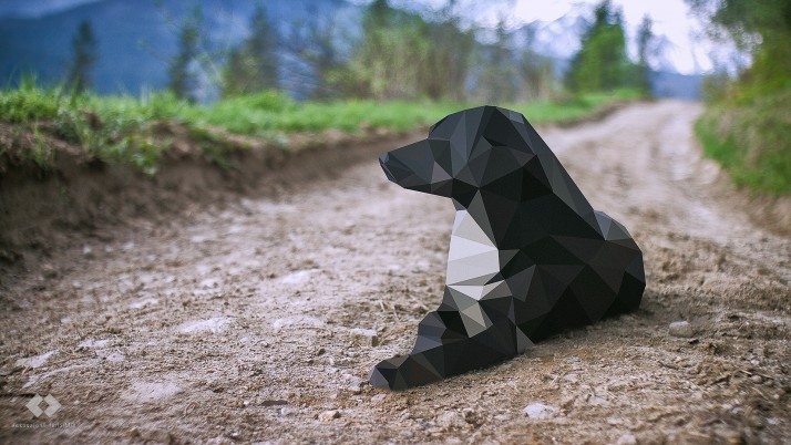 Low Poly Dog wallpapers and stock photos