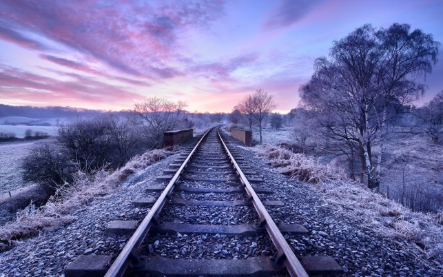 Rail Road In Purple wallpapers and stock photos