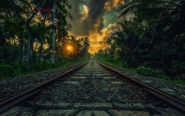 Rail Road Palms Clouds Sunset wallpapers and stock photos