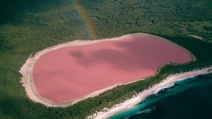 Pink Lake Hillier Australia wallpapers and stock photos