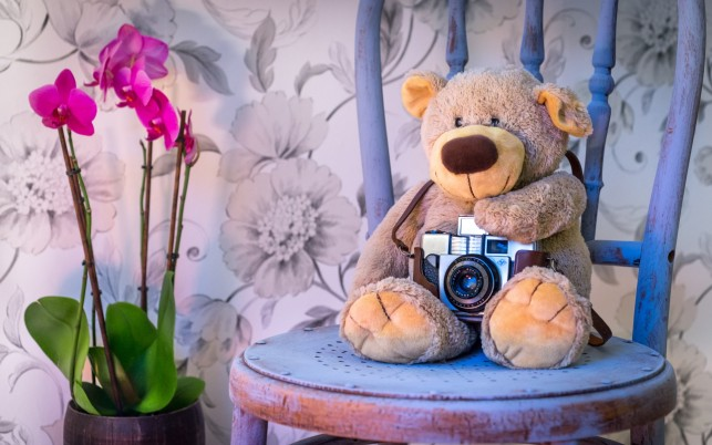 Previous: Teddy Bear Camera