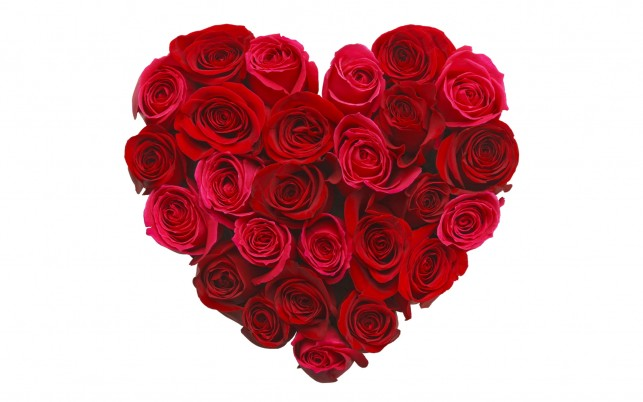 Red Roses Heart wallpapers and stock photos