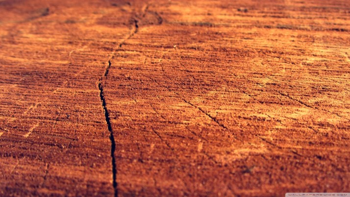 Wood Log wallpapers and stock photos