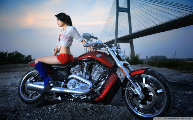 Harley Davidson wallpapers and stock photos