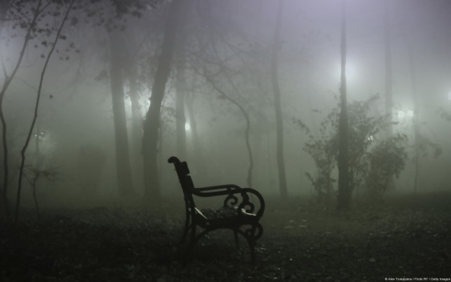 Fog Alone Dark wallpapers and stock photos