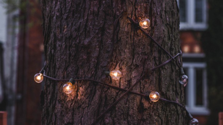Trunk Tree Lamp Garland wallpapers and stock photos