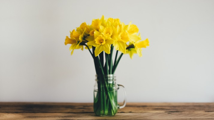 Daffodils Bouquet Vase wallpapers and stock photos