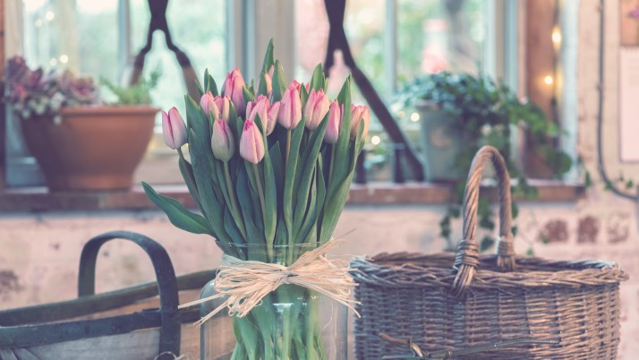 tulips_bouquet_vase wallpapers and stock photos