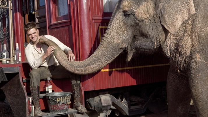 Water For Elephants wallpapers and stock photos
