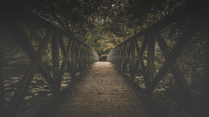bridge, board, trees wallpapers and stock photos