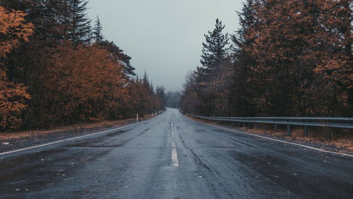 road, marking, trees, overcast wallpapers and stock photos