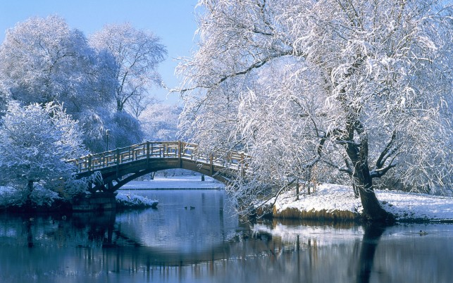 Winter in the park, snow, lake, bridge, nature wallpapers and stock photos