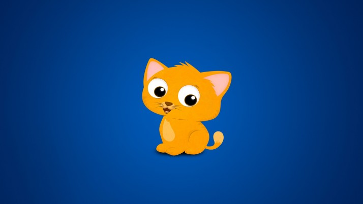 gato, gatito, imagen, rojo, azul wallpapers and stock photos