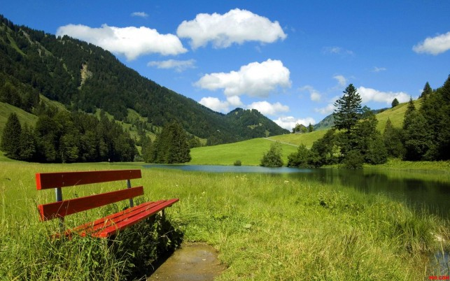 Random: Best Of Nature, green, sky, bench, blue, field
