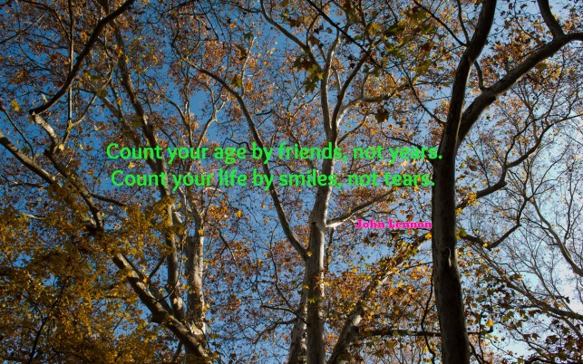 Count your age by friends, not years..., quote, quotes, smile, tear, artistic wallpapers and stock photos