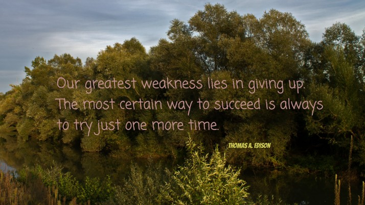 Previous: Our greatest weakness lies in..., quote, quotes, success, artistic