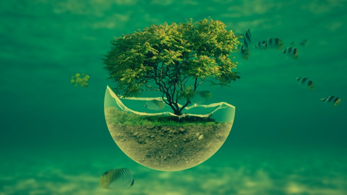 Tree in a glass sphere, water, fish, digital-art wallpapers and stock photos