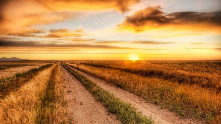 Country, cool, lonely, funny, road, nature wallpapers and stock photos