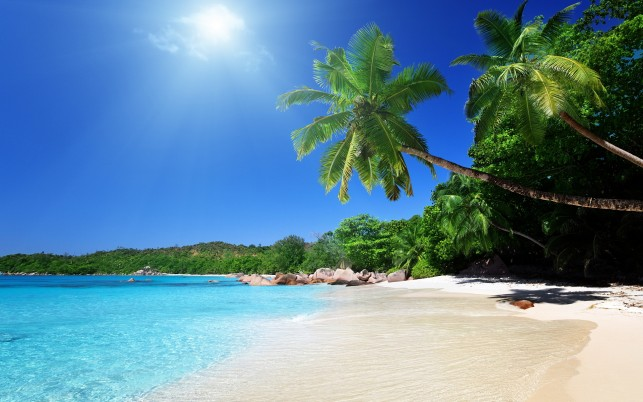Tropical Beach, caribbean wallpapers and stock photos