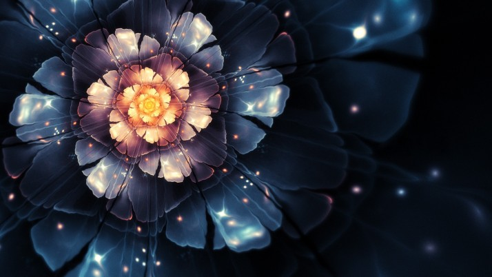 Glowing flower, floral, digital-art wallpapers and stock photos