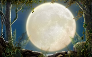 The Big Moon wallpapers and stock photos