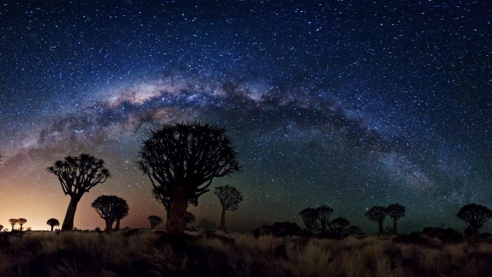 Vía Láctea sobre el bosque de Quiver Tree, espacio, nasa, galaxias, estrellas wallpapers and stock photos