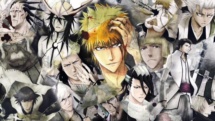 Bleach Characters, anime, fondo, field wallpapers and stock photos