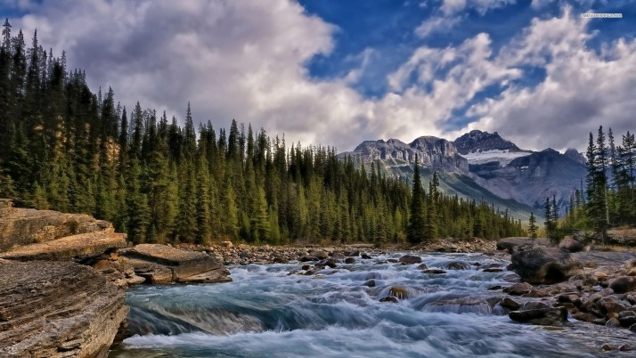 Banff National Park, canada, mountain, forest, tree, river, sky, cloud, nature wallpapers and stock photos