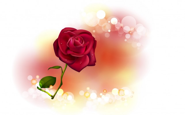 Rose, digital-art wallpapers and stock photos