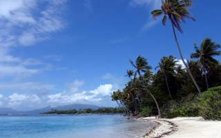 Tropical Island wallpapers and stock photos