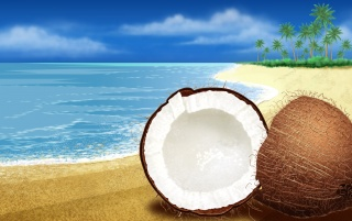 Coconuts wallpapers and stock photos