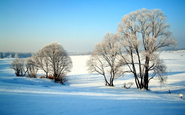 Winter Snow, nature,  saver wallpapers and stock photos
