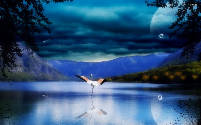 Flamingo on moonlit lake, sky, night, bird, digital-art wallpapers and stock photos