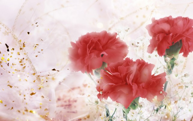 Flores de arte, rojo. wallpapers and stock photos