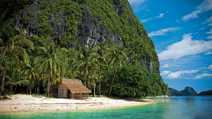 Palawan Philippinen, Reptil, Strand, Haus wallpapers and stock photos