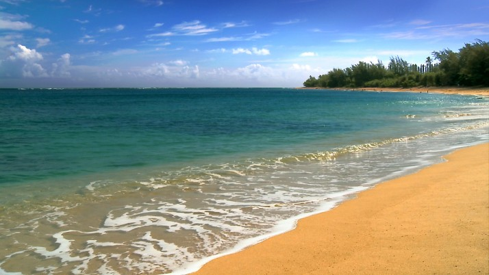 Hawaii Beach, nature,  resolution, high wallpapers and stock photos