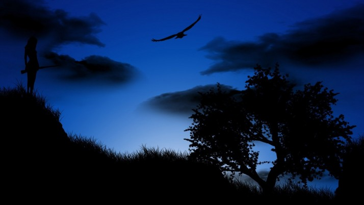 Random: Blue night, tree, bird, cloud, digital-art