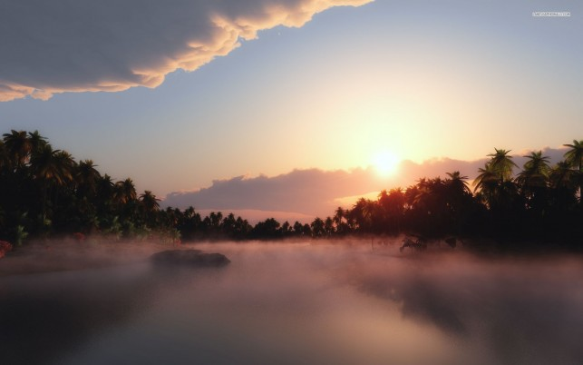 Foggy morning in the tropics, island, tree, sunrise, sky, cloud, nature wallpapers and stock photos