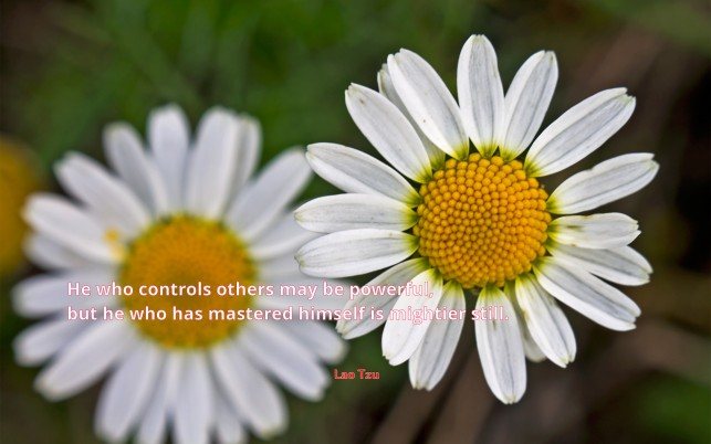 He who controls others..., quote, quotes, power, artistic wallpapers and stock photos