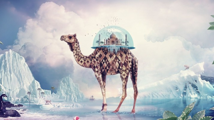 Camel carrying the Taj Mahal, digital-art wallpapers and stock photos