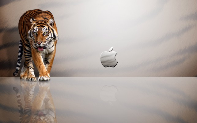 Apple Tiger, lion, white, mac, mountain wallpapers and stock photos