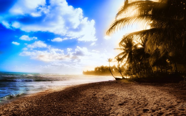 Sunny Beach, nature, summer,  exotic wallpapers and stock photos