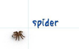 Spider Desk wallpapers and stock photos
