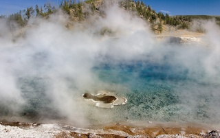 Previous: Excelsior Geyser
